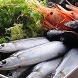 築地から仕入れる新鮮魚介の料理もおすすめです!