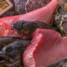 市場直送の鮮魚を存分に味わえます!