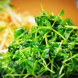 【おすすめ】青菜のあっさり炒め