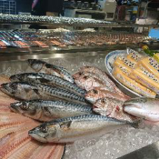 【鮮度抜群】新鮮な海鮮と旬の食材