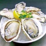 真牡蠣と岩牡蠣の食べ比べも特別価格! 真牡蠣4P&岩牡蠣2P MIX(全6P)・真牡蠣4P&岩牡蠣4P MIX(全8P)
