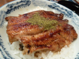 国産うなぎを使用したうな丼です。白いご飯とふわふわの鰻は最高の相性!