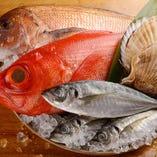 新鮮な魚介を贅沢につかった夜の定食をお楽しみください。