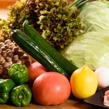 新鮮な野菜【栃木県】