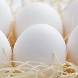 生みたて卵【栃木県/他】