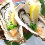 宮城県産殻付牡蠣。ほぼ年中ご提供しています