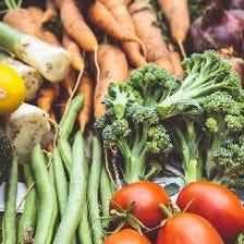 自家菜園のとれたて新鮮野菜