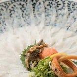 [広島名物穴子料理] 広島ならではのお造りや活き〆穴子白焼きで