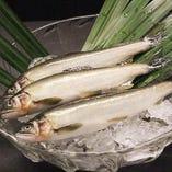 錦市場の新鮮な魚【京都府】