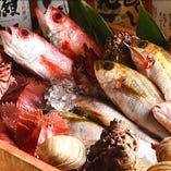 肉だけじゃない!!新鮮な海の幸【国内】