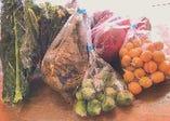 有機農園けのひのお野菜【神奈川県】