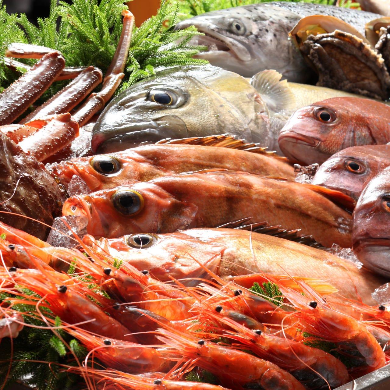 毎朝港から直送★新鮮鮮魚