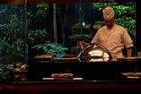 目の前で熟練された職人が1品ずつ揚げた天ぷらを堪能できます。海外からのお客様にも好評です。