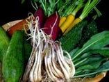 【旬の島野菜】地元恩納村の農家から毎日新鮮な島野菜が…