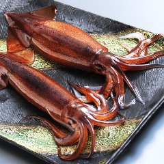 函館海鮮居酒屋 魚まさ 札幌すすきのF45店