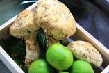 四季感じる旬な野菜をシンプルに・・