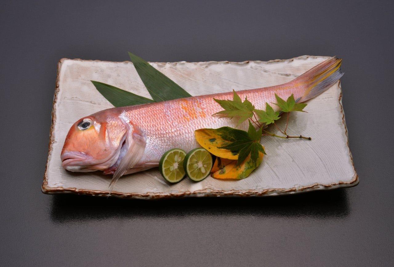 素材の旬を味わう京料理