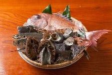厳選地魚の姿造り