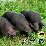 幻の中の幻!希少価値の高い宮城ミートさんの黒琉豚!【沖縄県名護市】