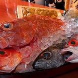 大阪ではなかなかお目にかかれない珍しい海鮮ものがてんこ盛り!
