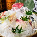 名古屋の市場から毎日仕入れる鮮魚を使ったお刺身は必食