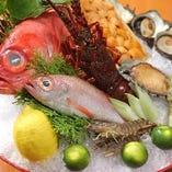 【厳選素材】 魚・肉・野菜と市場より新鮮な食材を毎日仕入れ
