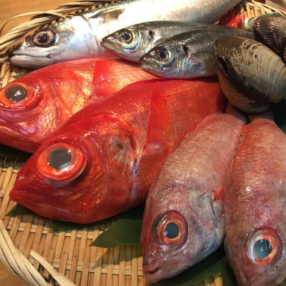 《鮮度》日本全国から届く新鮮なお魚