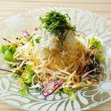 野菜と釜揚げしらすの大根サラダ