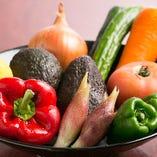 【全国各地の旬な野菜】【全国各地】