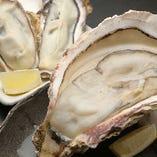 【大振り牡蠣】 食感も楽しめる牡蠣がなんと3時間食べ放題!