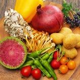 彩り豊かな採れたて野菜【国産】