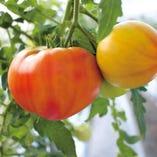 極上トマト盛り