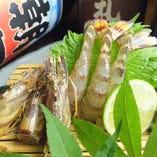 車海老をはじめ、中とろやかんぱち、赤貝など旬ものを日替わりで
