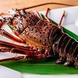 【国産伊勢海老】 鮮度抜群の海鮮を鉄板焼でお楽しみください