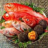 新鮮な魚介【国内】