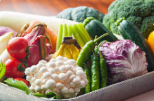 野菜ソムリエ厳選の野菜