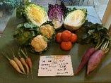 平農園のカラフル野菜【兵庫県南あわじ市】