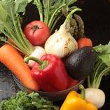 太陽の恵みを浴びて育った新鮮野菜使用【国内】