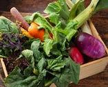 厳選素材を使用!身体が喜ぶ、優しい味わいの料理をご提供
