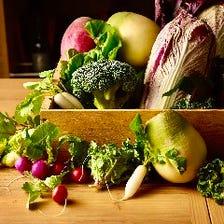 採れたてを堪能『三浦野菜のバーニャカウダコース』全8品スパークリング含む最大3時間飲み放題付き4400円