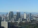 晴天の日には富士山も望めます