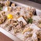 アイスベットにずらりと並べられた牡蠣はまさに圧巻!