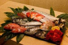 魚我志 むさし