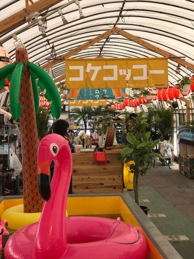 地鶏とビアガーデン ナツタロウ  店内の画像