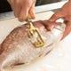 新鮮な鮮魚を目の前で調理!