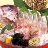酒宴に華を添える真鯛の姿造り!