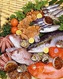 築地直送の新鮮な海鮮【築地市場】