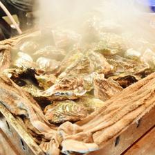 旬の牡蠣料理食べ放題【2000円】税込
