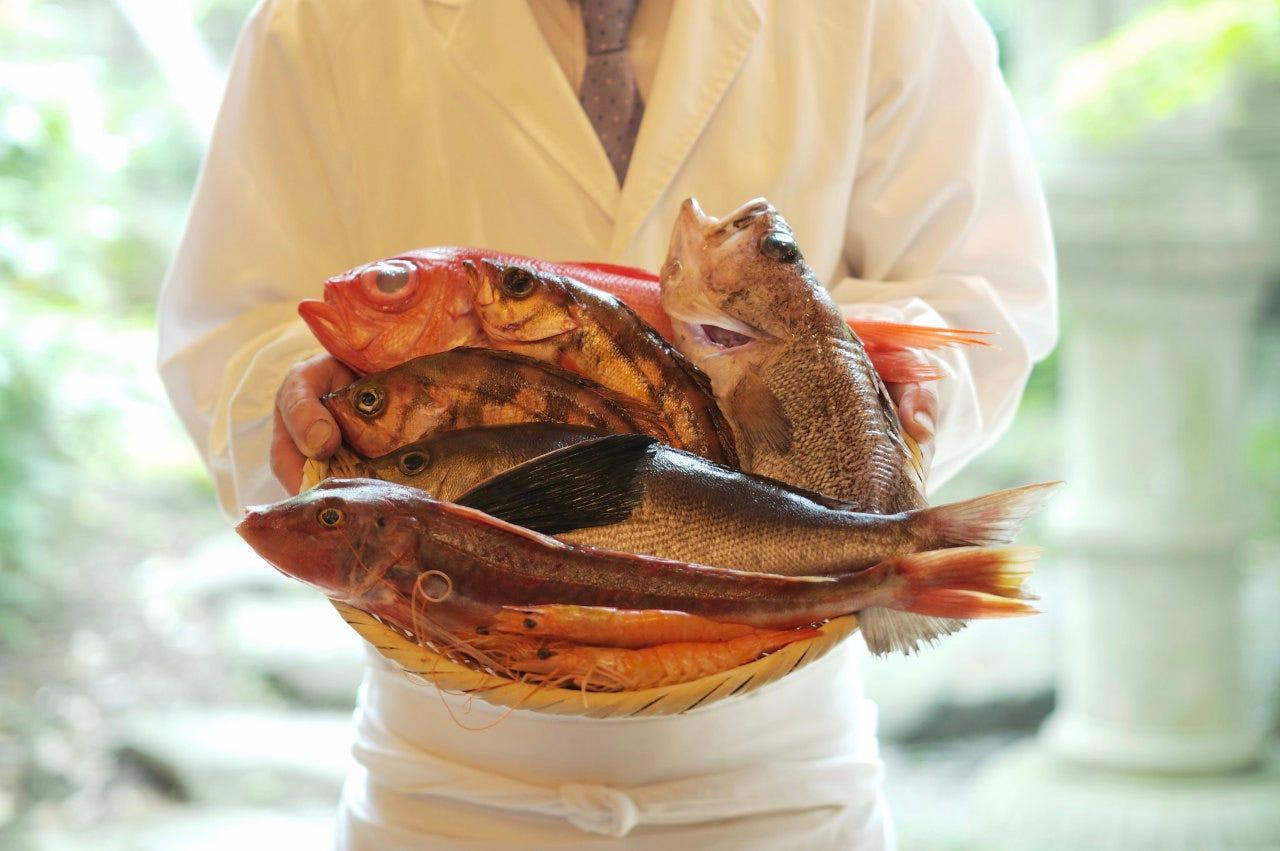 新鮮な魚を毎日仕入れ提供しています