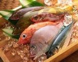 全国各地の漁港直送の旨いもんをおたのしみ下さい!